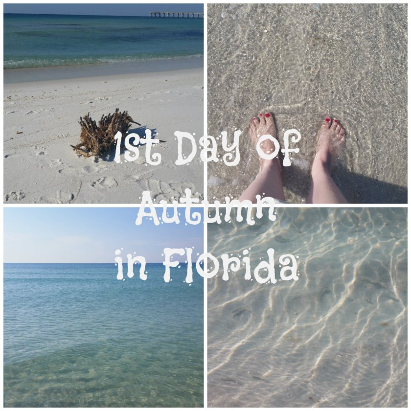 florida-autumn-collage